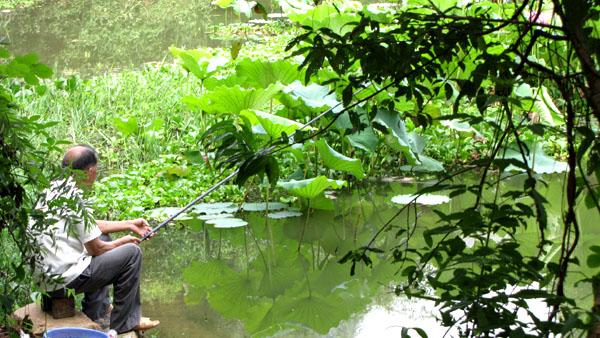 Un pêcheur dans un parc